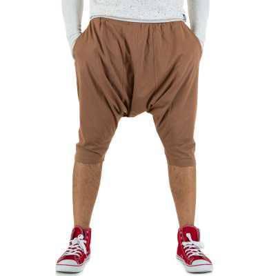 Shorts für Herren in Braun